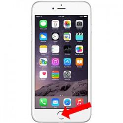 Iphone 6S Plus Homeknap Reparation Hvid