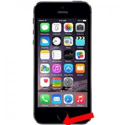 iPhone 5S Ladestik reparation Sort