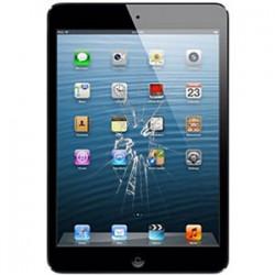 iPad Mini Glas reparation Sort, OEM
