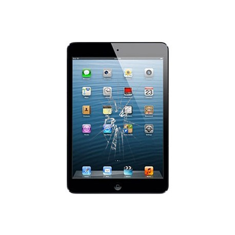 iPad Mini Glas reparation Sort, OEM