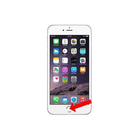 iPhone 7/7Plus Homeknap Reparation